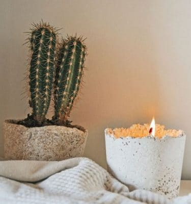 Restore Potted Soy Candle @ beyoutifi 1